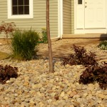 Oaks Shade Landscaping Stone Placement